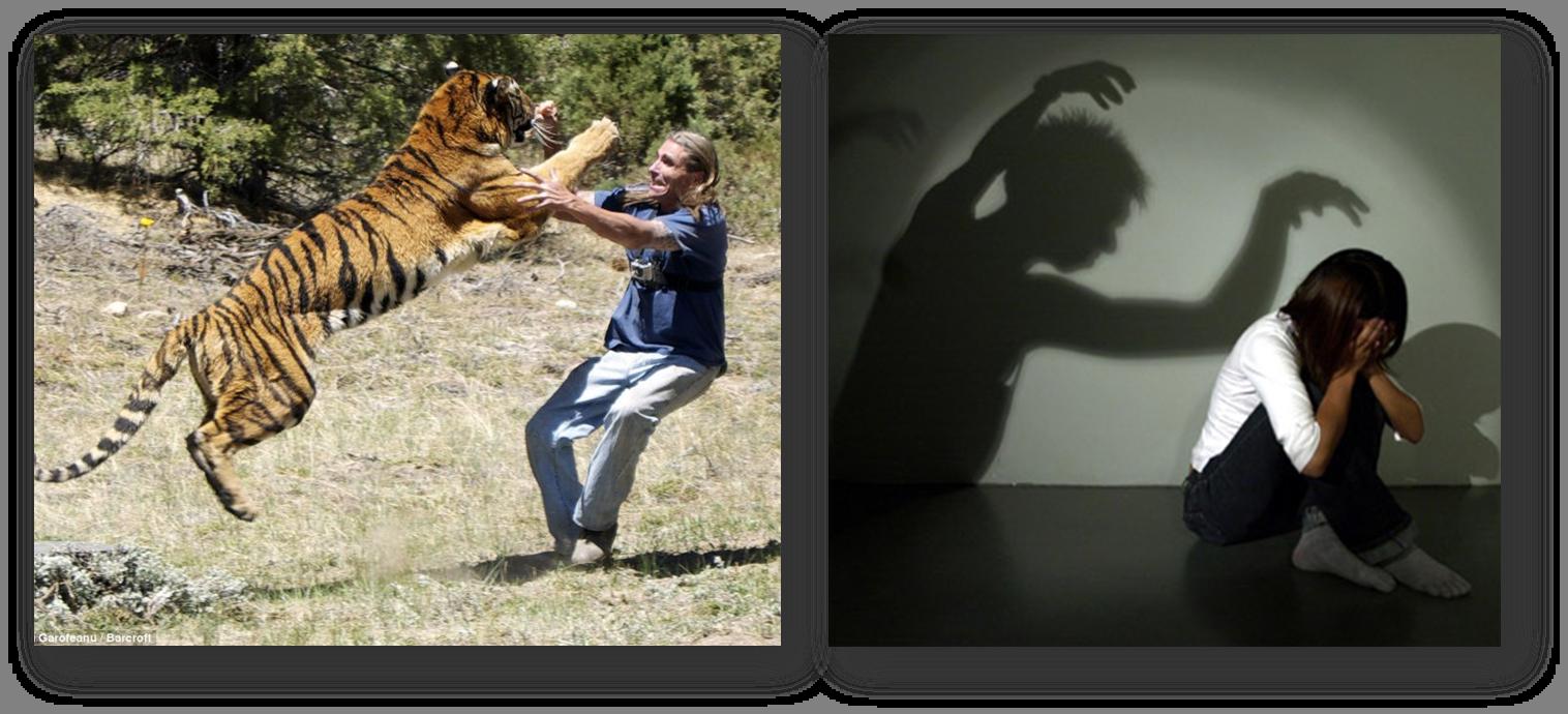 2 tipos de miedo