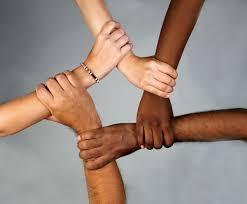 2. diversity